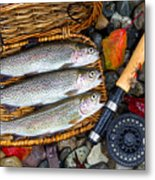 Creel With Native Trout  Metal Print