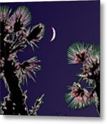 Crescent And Palms Metal Print