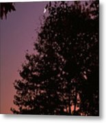 Crescent Moon And Tree Silhouette At Dusk Metal Print