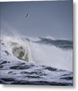 Crest Of A Wave Metal Print