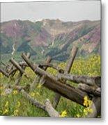 Crested Butte Color Metal Print