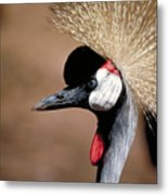 The I Can't Believe It Bird Metal Print