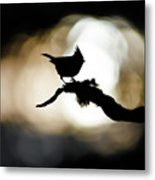 Crested Tit Silhouette Metal Print