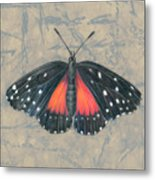 Crimson Patch Butterfly Metal Print