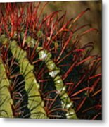 Crimson Thorns 2 Metal Print