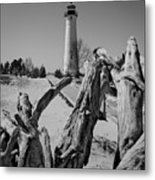 Crisp Point Lighthouse With Driftwood Metal Print