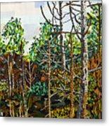 Croatan Forest 1 Metal Print
