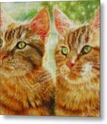 Crook And Chase Metal Print