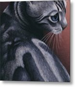 Cropped Cat 1 Metal Print by Carol Wilson