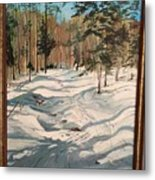 Cross Country Ski Trail Metal Print