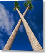Crossed Palm Trees Metal Print