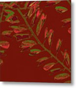 Crossing Branches 15 Metal Print