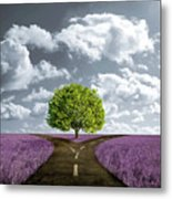 Crossroad In Lavender Meadow Metal Print