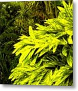 Croton Cascading Down The Hillside Metal Print