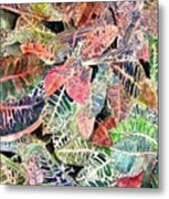 Croton Tropical Art Print Metal Print