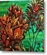 Crotons 5 Metal Print