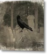 Crow In The Old Graveyard Mix Metal Print