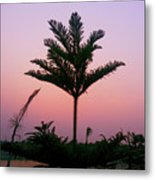 Crown In Pink Sky Metal Print