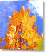 Crown Of Gold Metal Print