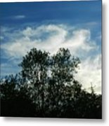 Crowned Trees Metal Print
