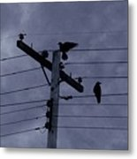 Crows And A Crescent Moon Metal Print