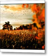 Crows And Corn Metal Print