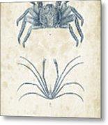 Crustaceans - 1825 - 14 Metal Print