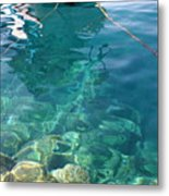 Crystal Clear Metal Print