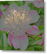 Crystalline Flower Metal Print