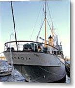 Css Acadia 1 Metal Print