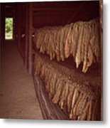 Cuban Tobacco Shed Metal Print