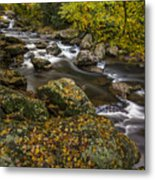 Cullasaja River In Autumn Metal Print