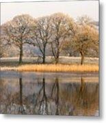 Cumbria, England Lake Scenic With Metal Print