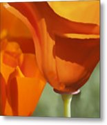 Cup Of Gold Metal Print