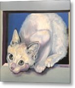 Curiosity Metal Print by Susan A Becker