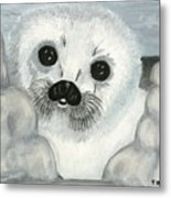 Curious Arctic Seal Pup Metal Print