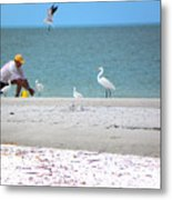Curious Birds Metal Print