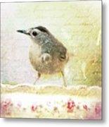 Curious Catbird Metal Print