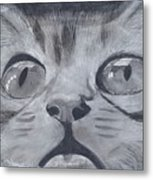 Curious Eyes Metal Print