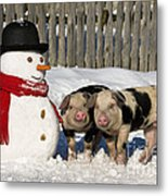 Curious Piglets And Snowman Metal Print
