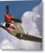 Curtiss P-40n Warhawk Metal Print