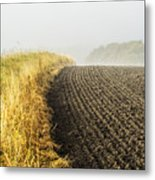 Curves And Fog Metal Print