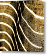 Curves And Folds Metal Print