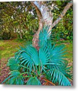Curves And Fronds Metal Print