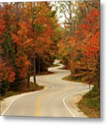 Curvy Fall Metal Print