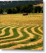 Cut Hay In Field Metal Print