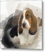 Cute Little Basset Artesien Normand Puppy Metal Print