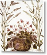 Cyclamen & Lavender, 1613 Metal Print