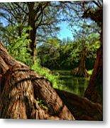 Cypress Bend Park In New Braunfels Metal Print