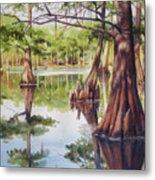 Cypress In Lake Chicot Metal Print